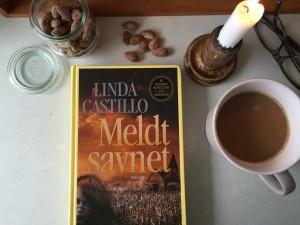 """""""Meldt savnet"""" af Linda Castillo"""