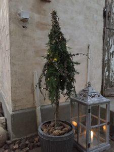 Opstammet træ lavet med en tyk kæp i en krukke med jord. Viklet med gran og lau-grene med ståltråd og til sidst en lyskæde på
